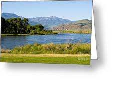 Along Yellowstone  Greeting Card