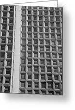Alot Of Windows In Black And White Greeting Card