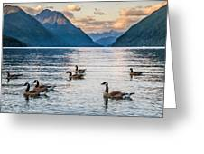 Alouette Lake Geese Greeting Card