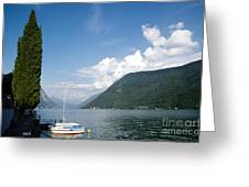 Alpine Lake With A Cypress Tree Greeting Card