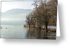 Alpine Lake With Trees Greeting Card