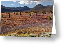 Alpine Landscape In Fall Greeting Card
