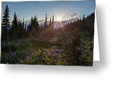 Alpine Meadow Sunrays Greeting Card
