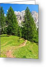 alpine path in Contrin Valley Greeting Card