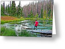 Alpine Pond On Alpine Pond Trail In Cedar Breaks National Monument-utah Greeting Card