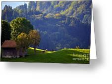 Alpine Summer Scene In Switzerland Greeting Card