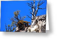 Alpine Wyoming Greeting Card