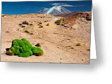 Altiplano Landscape Greeting Card