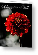 Always Stand Tall Greeting Card