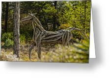Alys Beach Driftwood Horse Greeting Card