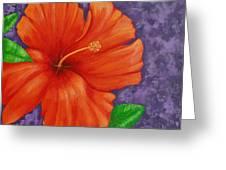 Amapola Greeting Card