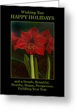 Amaryllis Flower Holiday Card Greeting Card