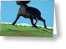 Amazing Black Dog, 2000 Greeting Card by Marjorie Weiss