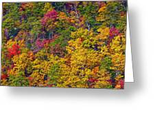 Amazing Cloudland In The Fall Greeting Card