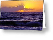 Amazing - Florida - Sunrise Greeting Card