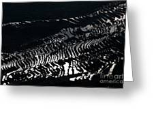 Amazing Rice Terrace In Black And White Greeting Card