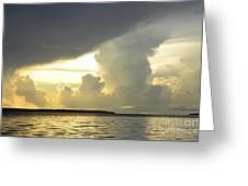 Amazon River Landscape Greeting Card