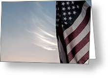 America Greeting Card by Peter Tellone