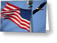 America Soaring Greeting Card