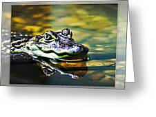 American Alligator 2 Greeting Card
