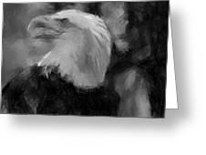 American Bald Eagle V4 Greeting Card