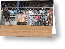 American Cowboy Bucking Rodeo Bronc Greeting Card
