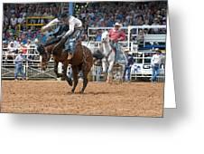 American Cowboy Riding Bucking Rodeo Bronc II Greeting Card