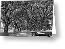 American Dream Drive 2 Bw Greeting Card