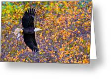 American Eagle In Autumn Greeting Card