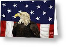 American Eagle And Flag Greeting Card