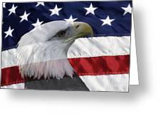American Flag And Bald Eagle Greeting Card by Jill Lang