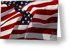 American Flags   #5147 Greeting Card