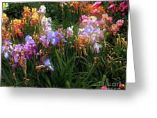 American Giverny Greeting Card