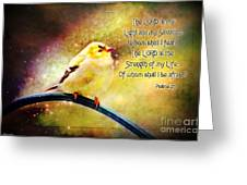 American Goldfinch Gazes Upward  - Series II  Digital Paint With Verse Greeting Card