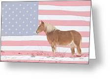 American Palomino Greeting Card