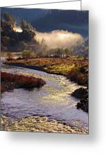 American River Confluence Greeting Card