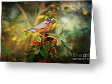 American Robin - Harbinger Of Spring Greeting Card