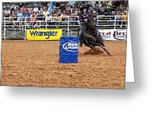 American Rodeo Female Barrel Racer White Star Horse I Greeting Card by Sally Rockefeller