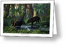 American Tapir Greeting Card