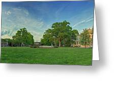 American University Quad Greeting Card