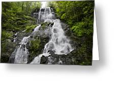 Amicalola Falls Greeting Card
