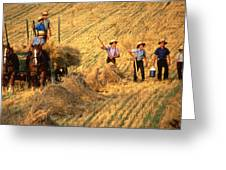 Amish Boys Wheat Harvest  Greeting Card