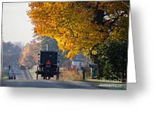 Amish Buggy Fall 2014 Greeting Card
