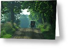 Amish  Buggy Gravel Road Greeting Card