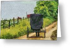 Amish Buggy In Ohio Greeting Card