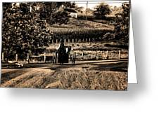 Amish Buggy On A Country Road Greeting Card