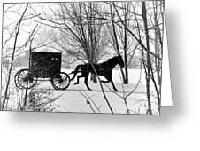 Amish Buggy Revised Greeting Card