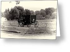 Amish Buggy Sept 2013 Greeting Card