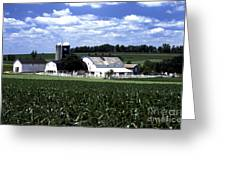 Amish Country - 38 Greeting Card