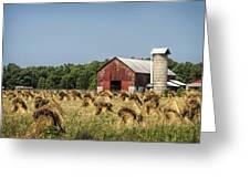 Amish Country Wheat Stacks And Barn Greeting Card